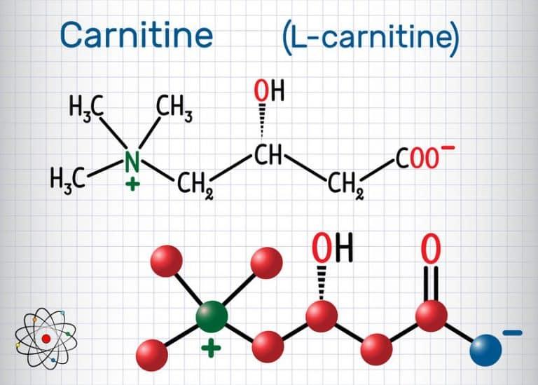 l carnitina efectos secundarios en mujeres