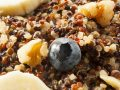 Quinoa: ¿Cúales son los mejores productos del 2020?