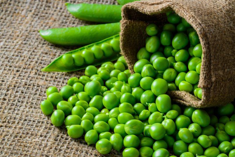 proteina vegana-3