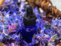 Aceite de borraja: ¿Cuál es el mejor producto del 2020?