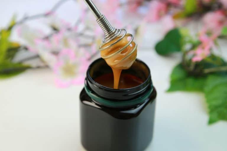 Sacando miel de Manuka