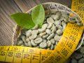 Quemadores de grasa: ¿Cuál es el mejor del 2020?