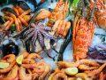Colágeno marino: ¿Cuál es el mejor producto del 2020?