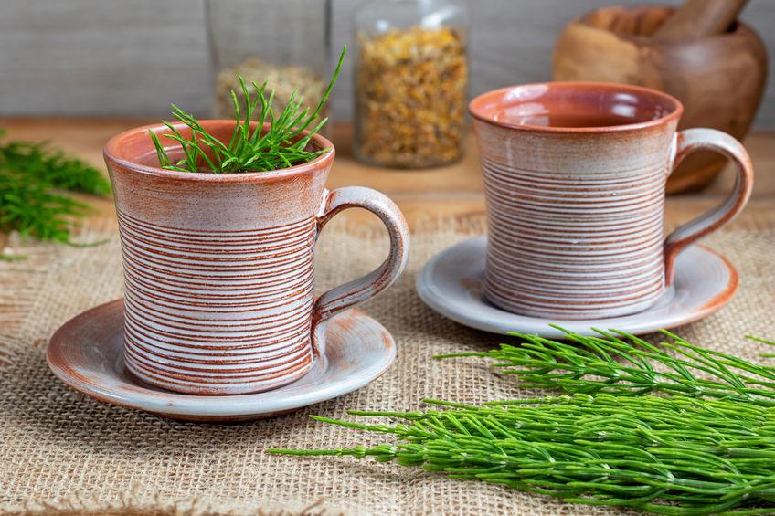 Dos tazas en mesa una con planta de cola de caballo