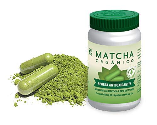 Cápsulas Matcha Puro Orgánico 60 por frasco Hechas de Matcha 100% Puro Orgánico / Aporta Antioxidantes