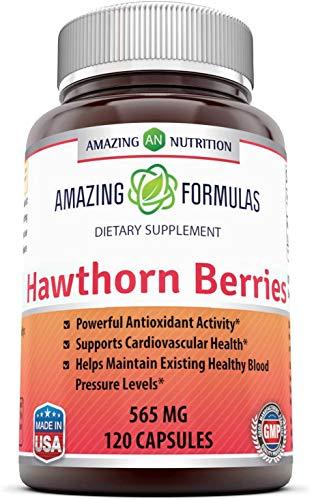 Extracto de Bayas de Espino   Amazing Nutrition   Suplemento   100% Puro   Potente Actividad Antioxidante   Hierbas   565 mg   120 Cápsulas