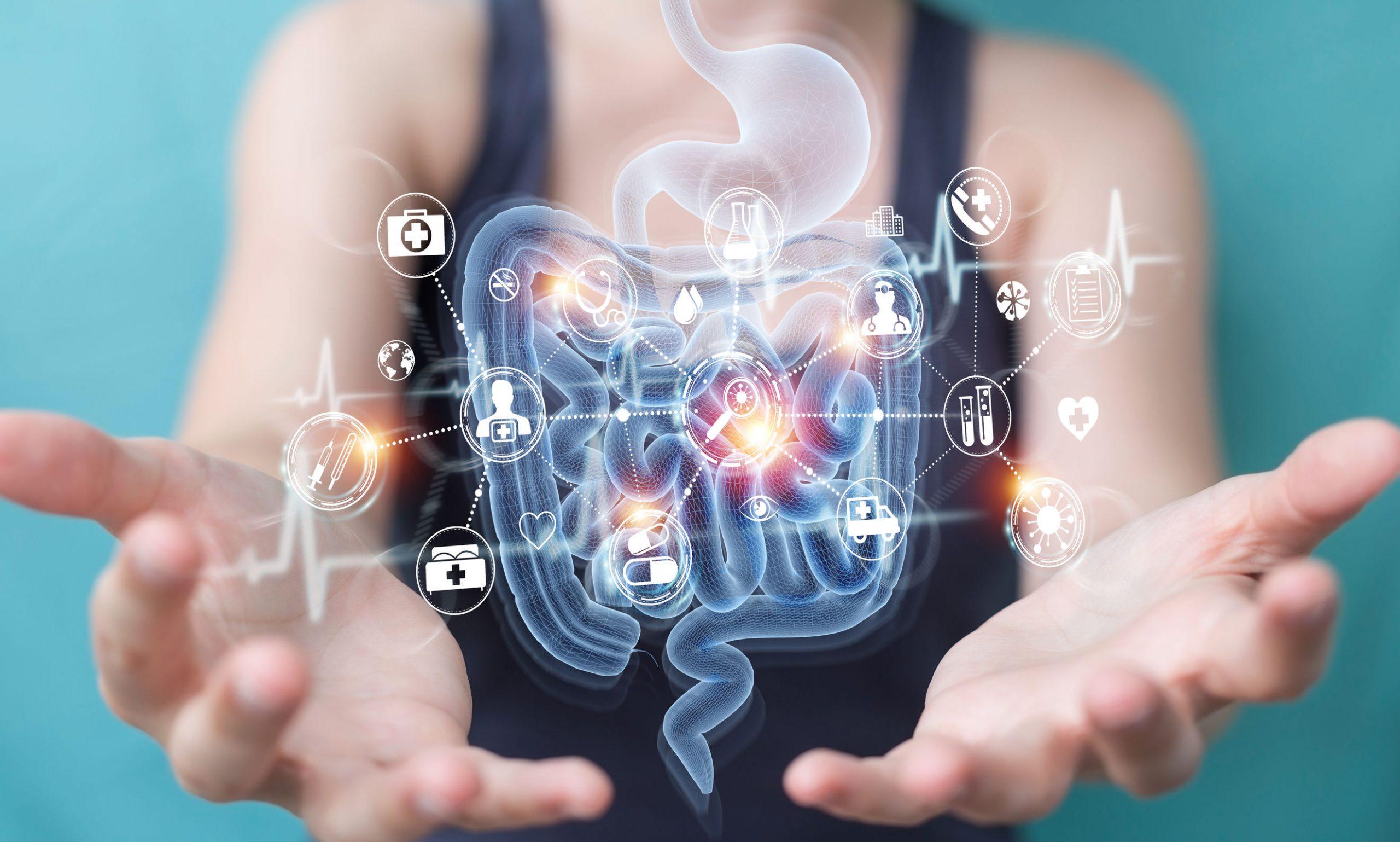 Enzimas digestivas: ¿Cuál es el mejor suplemento de 2021?