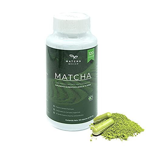 Cápsulas Matcha Puro Orgánico 120 por frasco Hechas de Matcha 100% Puro Orgánico / Aporta Antioxidantes